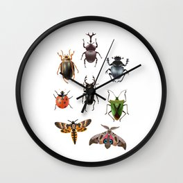 Moth insect butterfly bug insect gift Wall Clock