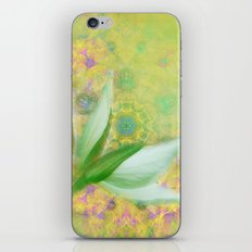 Bauhinia buds against textured green background iPhone & iPod Skin