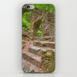 Forest Castle Ruins iPhone Skin