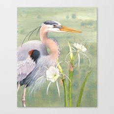 Great Blue Heron and Spider Lilies Canvas Print