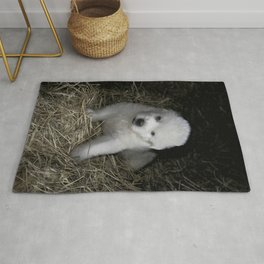 Great Pyrenees Puppy Rug