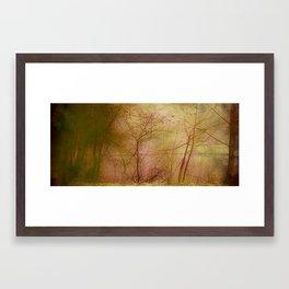 Fairy Lake Framed Art Print