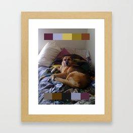 What a dog Framed Art Print
