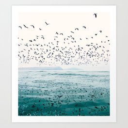 Birds Reflected Fine Art Print Art Print