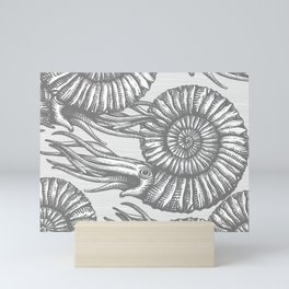 AMMONITE COLLECTION GRAY Mini Art Print