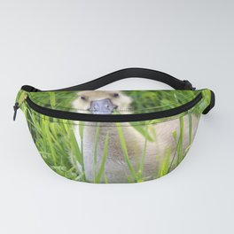 A gray goose chick Fanny Pack