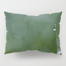 standing out Pillow Sham