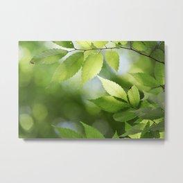 Green Tree Leaves Metal Print