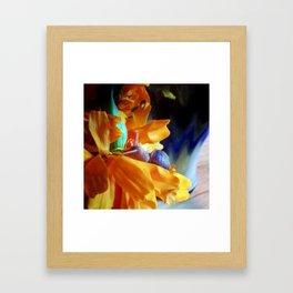 Flor de cempasúchil Framed Art Print