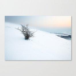 Dunstable Downs Snow Canvas Print