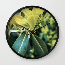 Fortune's Spindle Wall Clock