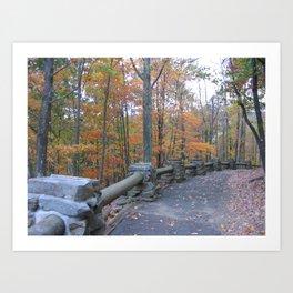 Fall Trees Along Trail Art Print