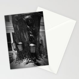 Sugaring 2 - Maple Syrup Stationery Cards