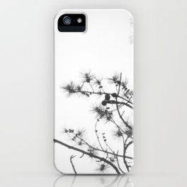 pine branches iPhone Case