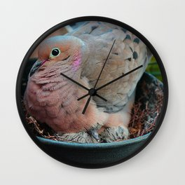 Baby Bird Peeking out at the World Wall Clock