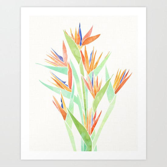 Birds of Paradise ~ tropical bouquet by kristiangallagher