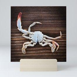 Crabby Mini Art Print