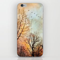 January iPhone & iPod Skin