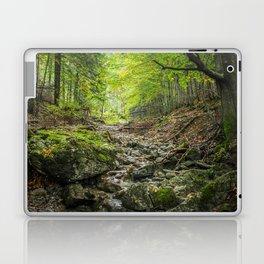 The autumn valley Laptop & iPad Skin