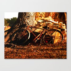 the afternoon bicycle.  Canvas Print