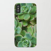 succulents iPhone & iPod Cases featuring Succulents by Michelle McConnell