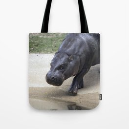 Baby Hippo Tote Bag