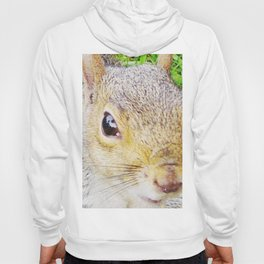 The many faces of Squirrel 5 Hoody