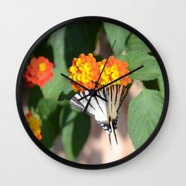 Scarce Swallowtail Butterfly Wall Clock