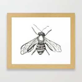 The Pale Bee Framed Art Print