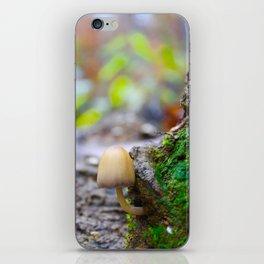A Forest Floor - Mushroom Photograph iPhone Skin