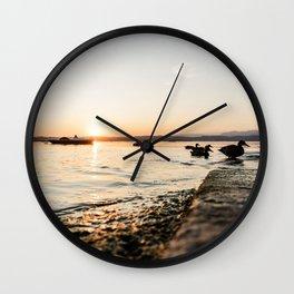 Ducks at the lake Wall Clock
