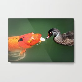 Don't Play Coy with Me Metal Print