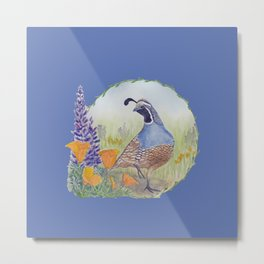 California Quail with Poppies and Lupine on Blue Metal Print