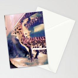 Animal Like Stationery Cards
