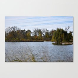 Willow and Water Canvas Print