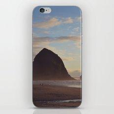 Haystack iPhone & iPod Skin