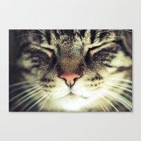 meow Canvas Prints featuring Meow by BURNEDINTOMYHE∆RT♥