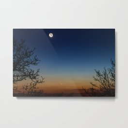 Moonscape Metal Print