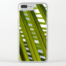 Blinds Clear iPhone Case