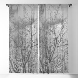 Trees and clouds, black and white Sheer Curtain