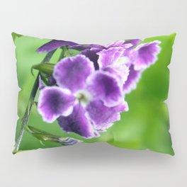 Transformation, Purple Duranta Photography Pillow Sham
