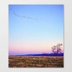 Single File Canvas Print