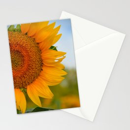 Kansas Sunflower Stationery Cards