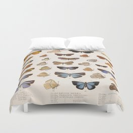 Vintage Scientific Insect Butterfly Moth Biological Hand Drawn Species Art Illustration Duvet Cover