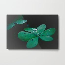 The Crying Heart Metal Print