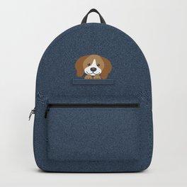 Beagle in a Pocket Backpack
