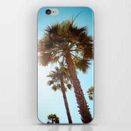 Palm Tree Beach Life iPhone Skin