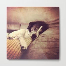 Dog Dreaming Metal Print