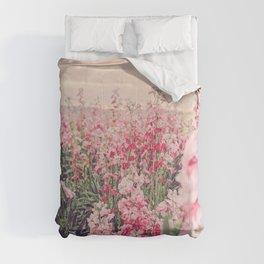 Pia Comforters