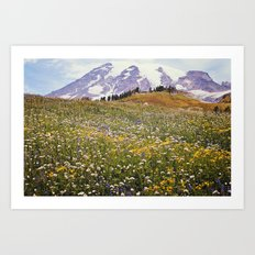 Rainier Flowers Art Print